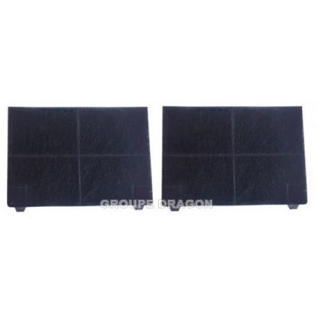 filtres a charbon (2 pieces)
