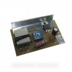 carte electronique variateur 100311638