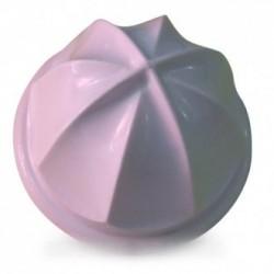 cone presse agrumes
