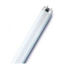 LUMILUX T8 LAMPE FLUORESCENTE LUMILUX(OSRAM), T8 26X720MM COOLWHITE
