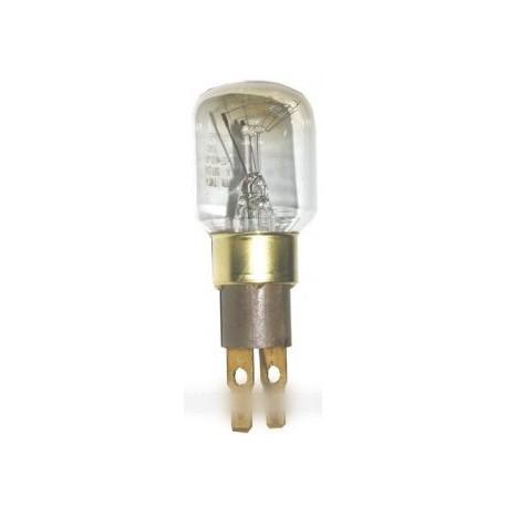 ampoule t25 240 volts 15 watt